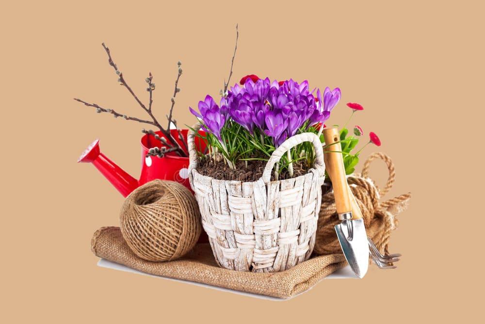 Инвентарь для цветов ТК Тоншаловский